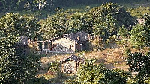 Rajaji National Park in ddn