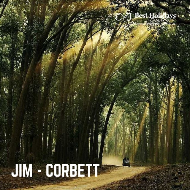JIm Corbett Park