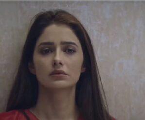 Hindi Web Series Client No. 7 Reviews –All Seasons, Episodes & Cast!!!!